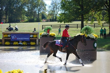 Nates Mineshaft and Shannon Reed tackle a competitive trail obstacle at the 2017 Thoroughbred Makeover at the Kentucky Horse Park