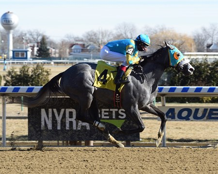 Lezendary - Maiden Win, Aqueduct, January 14, 2018