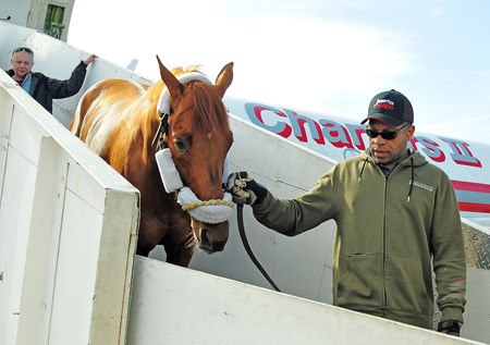 Gun Runner arrives at Bluegrass Airport in Lexington, Ky., Sunday afternoon, one day after winning the final race of his career, The Pegasus World Cup...