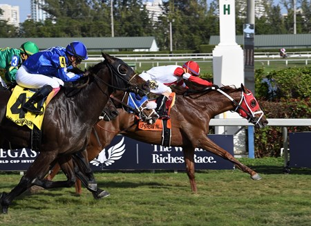 Oscar Nominated wins the W. L. McKnight Handicap