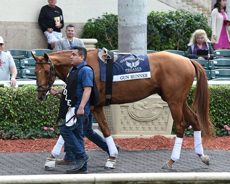Gun Runner - Gulfstream Park, January 25, 2018