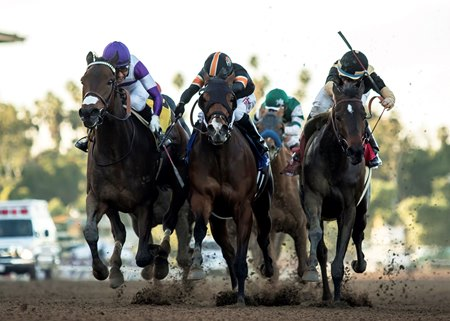 Mopotism (outside) battles Mended (center) and La Force (inside) for the La Canada Stakes win at Santa Anita Park
