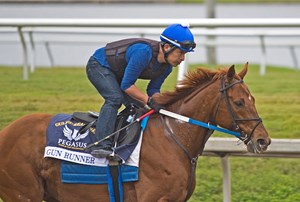 Gun Runner, seen here on Jan. 21, has settled in well at Gulfstream Park