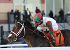 Firenze Fire wins the Jerome Stakes at Aqueduct Racetrack