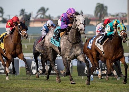 Stormy Victoria wins The South Beach Stakes at Gulfstream on January 27th, 2018, jockey Joel Rosario up