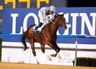 Heavy Metal takes the Al Maktoum Challenge Round 1 by 4 1/2 lengths over Thunder Snow at Meydan
