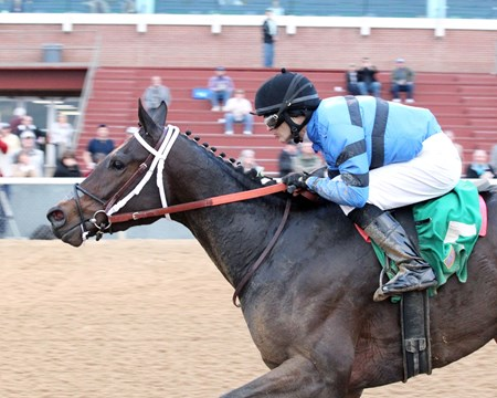 Torrent - AOC, Oaklawn Park, January 26, 2018