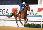 Gold Town wins the Jan. 25 UAE Two Thousand Guineas Trial at Meydan