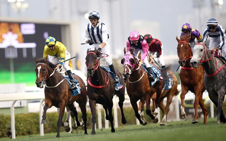 Danny Shum-trained Seasons Bloom (No. 6), with Joao Moreira on board, edges Fifty Fifty (No. 11) to win the G1 Stewards' Cup (1600m), the first leg of Triple Crown, at Sha Tin Racecourse