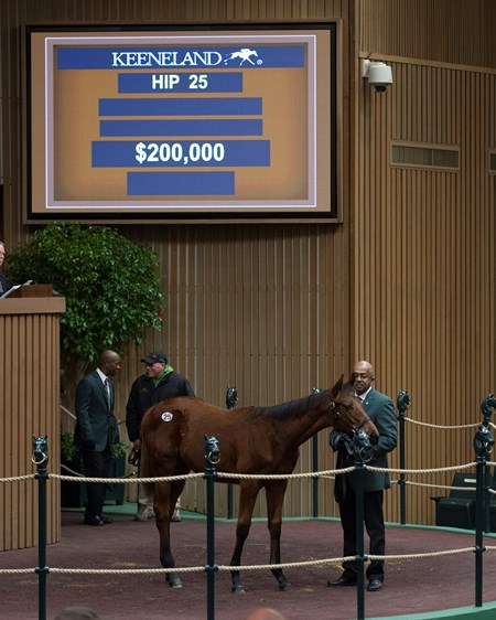 Hip 25 yearling colt by Uncle Mo from Emerald Gold and Hill 'n' Dale brings $200,000 at Keeneland in Lexington, KY.