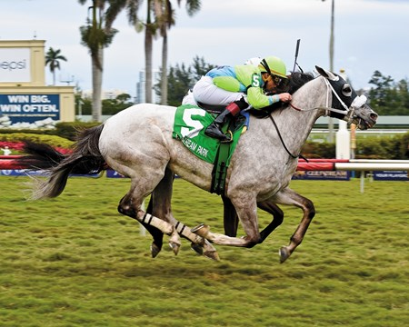 Galleon Mast, Sunshine Million Turf Stakes; Gulfstream Park; January 20 2018