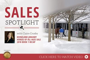 2018 Keeneland January Horses of All Ages Sale Recap