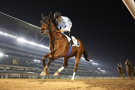 Aslan wins the Al Naboodah Travel Handicap at the Eight Racing at Meydan meeting on January 20th, 2018