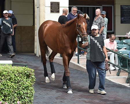 Giant Expectations - Gulfstream Park, January 25, 2018