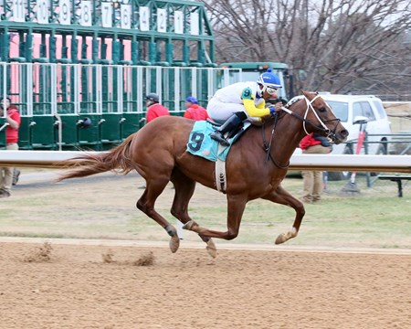 Bee Jersey - ALW, Oaklawn Park, January 20, 2018