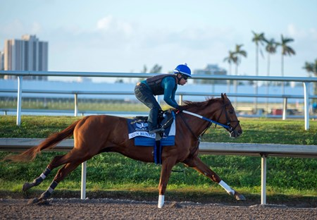 Gun Runner - Gulfstream Park - January 22, 2018