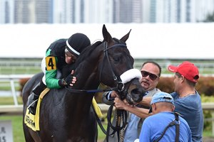 Jockey Emisael Jaramillo thanks Jay's Way for the win in the Sunshine Millions Classic Stakes at Gulfstream Park