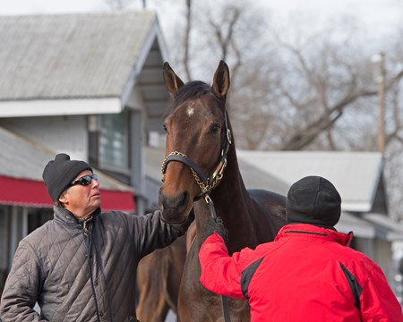 Reiley McDonald with Eaton Sales with hip 781A Mrs McDougal