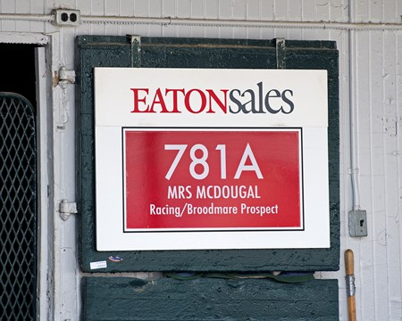 Hip 781A Mrs McDougal at Eaton Sales. Scenes and people at Keeneland January Sales 2018.