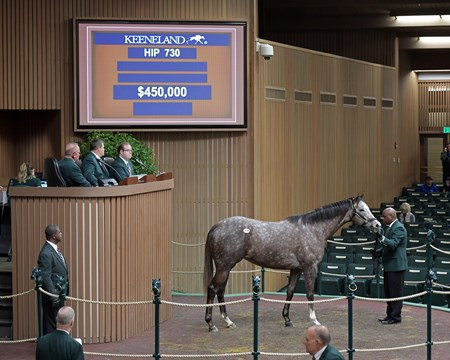 Banree from Eaton Sales sells to Andre Lynch at Keeneland January