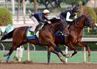 West Coast (outside) works with Cat Burglar at Santa Anita, clocking six furlongs in 1:12 flat from the gate