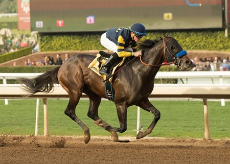 Ax Man wins his debut Jan. 1 at Santa Anita Park