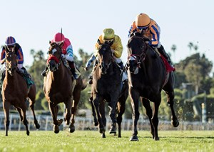 James or Tammy McKenney's Coniah and jockey Kent Desormeaux win the G3, $100,000 Las Cienegas Stakes, Saturday, January 20, 2018 at Santa Anita Park, Arcadia CA.
