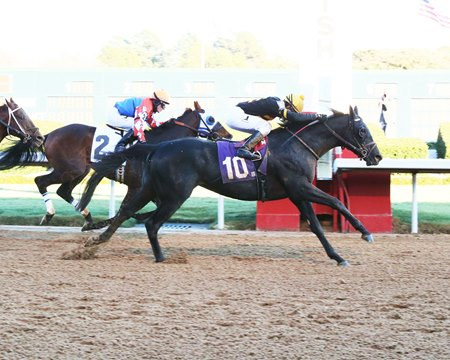 Sonneteer wins the Fifth Season Stakes, while Futile (inside) gets second and Far Right finishes third at Oaklawn Park