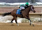 Favorite Tale wins the Dave's Friend Stakes
