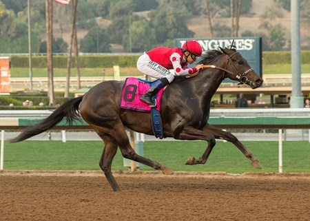 Midnight Bisou wins the 2018 Santa Ynez Stakes (G2)