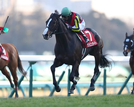 Danburite (JPN) wins the 2018 American Jockey Club Cup