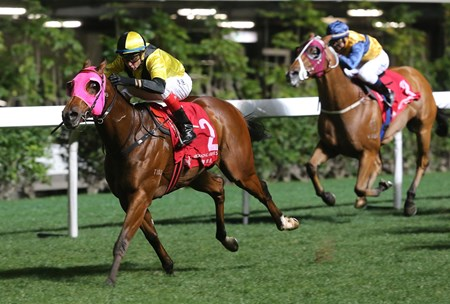 Born In China (No. 2), with Douglas Whyte in the saddle, wins the 2018 Happy Valley Trophy (1200m) at Happy Valley