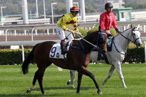 Southern Legend is entered in the Kranji Mile in Singapore