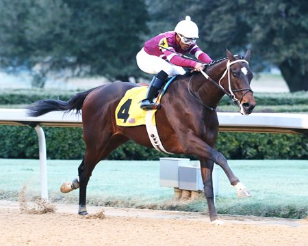 Tenfold breaks his maiden at Oaklawn Park