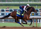 West Coast works at Santa Anita Feb. 11