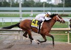 Audible wins the Holy Bull Stakes at Gulfstream Park