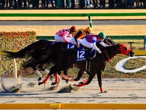 Nonkono Yume (outside) wins the February Stakes over Gold Dream and Incantation
