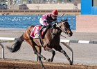 Reride digs in to win the Mine That Bird Derby by 2 1/2 lengths at Sunland Park