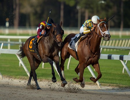 Flameaway (inside) battles with Catholic Boy for a half-length victory in the Sam F. Davis