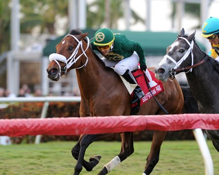 Speed Franco gets up over Gidu in the Dania Beach Stakes