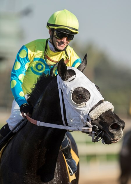 Jockey Flavien Prat guides Lombo to the winner's circle after their victory in the G3, $150,000 Robert B. Lewis Stakes, Saturday, February 3, 2018 at Santa Anita Park, Arcadia CA.