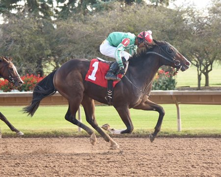 Dr. Shane and Jaime Rodriguez take the New York Breeders' Futurity.