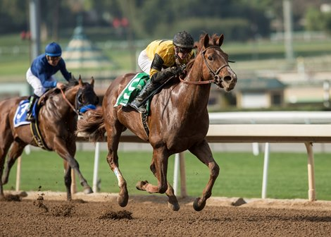 Kanthaka Charges Home To Take San Vicente Bloodhorse