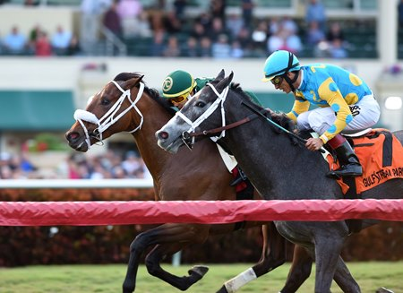 Speed Franco (outside) edges Gidu to win the Dania Beach Stakes at Gulfstream Park