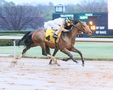 Blueridge Traveler returns to winning ways in a Feb. 10 allowance race at Oaklawn Park