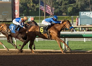 Selcourt holds on for a 3/4-length victory in the Las Flores Stakes at Santa Anita