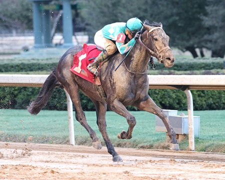 My Boy Jack takes the Southwest Stakes by 4 1/2 lengths at Oaklawn Park