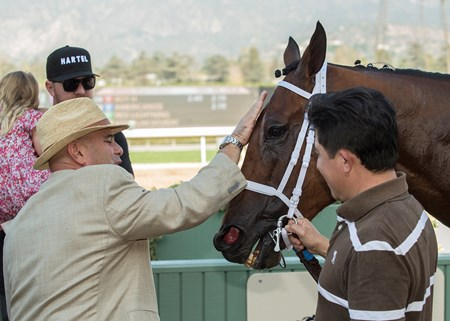 Trainer Peter Miller, left, has a moment with Roy H in the winner's circle after their victory in the G2, $200,000 Palos Verdes Stakes, Saturday, February 3, 2018 at Santa Anita Park, Arcadia CA