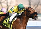Nine Route wins the Gander Stakes