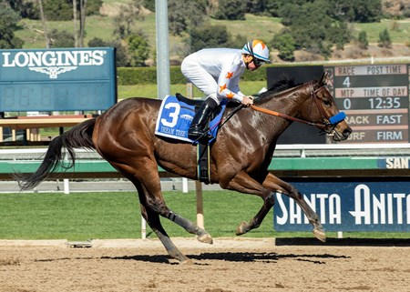 Dream Tree wins the 2018 Las Virgenes Stakes (G2)